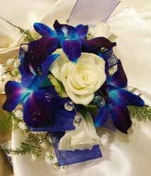 Galaxy Orchid Wrist Corsage from Arjuna Florist in Brockport, NY