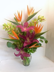 Hawaii Dreaming from Arjuna Florist in Brockport, NY