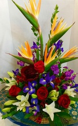 Exotic Expressions from Arjuna Florist in Brockport, NY