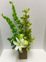 Green Expressions from Arjuna Florist in Brockport, NY