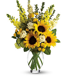 Here Comes The Sun! from Arjuna Florist in Brockport, NY