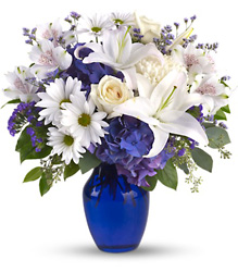 Beautiful in Blue from Arjuna Florist in Brockport, NY