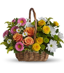 Sweet Tranquility Basket from Arjuna Florist in Brockport, NY