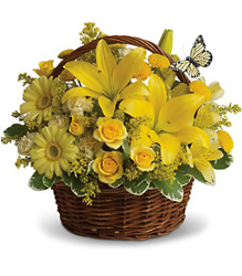 Basket Full of Wishes from Arjuna Florist in Brockport, NY