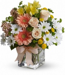 Teleflora's Walk in the Country Bouquet from Arjuna Florist in Brockport, NY