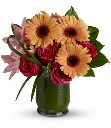 Be a Flirt from Arjuna Florist in Brockport, NY