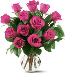 12 Hot Pink Roses from Arjuna Florist in Brockport, NY