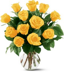 12 Yellow Roses from Arjuna Florist in Brockport, NY