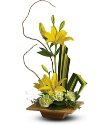 Bamboo Artistry from Arjuna Florist in Brockport, NY