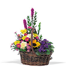 Basket of Glory from Arjuna Florist in Brockport, NY