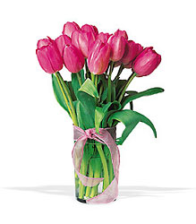 Pink Tulip Bouquet from Arjuna Florist in Brockport, NY